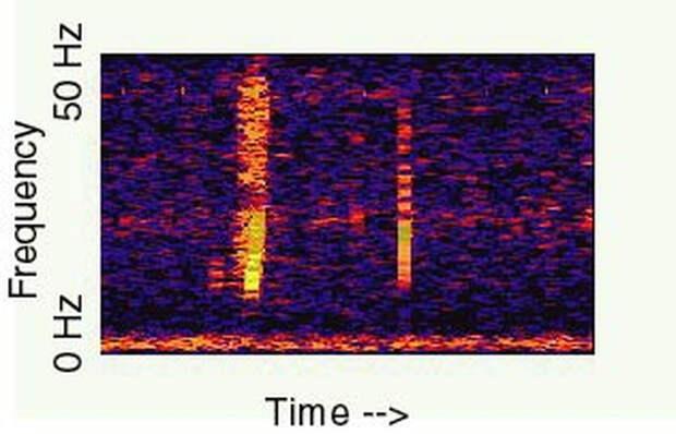 Спектрограмма «Булька» / ©NOAA