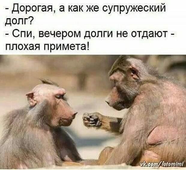 Жена у меня чемпионка России по боксу в полутяжёлом весе...