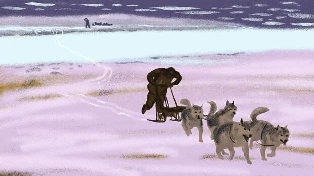 Война на мысе Стерлегова. Как провалился немецкий десант в Сибири