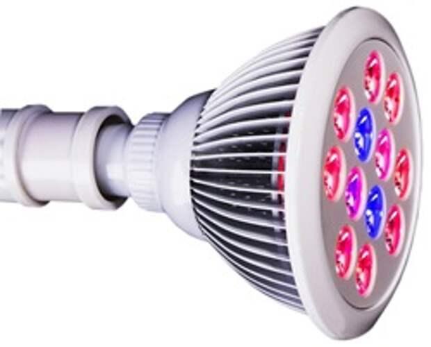 Подсветка для рассады в домашних условиях