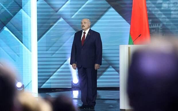 Выборы в Белоруссии: кубанский след