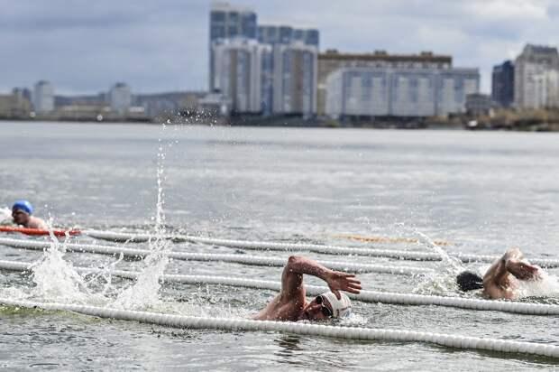 Сибирские «моржи» проплыли «Милю Победы» по Енисею