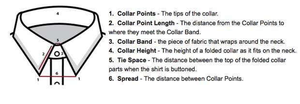 Anatomy-of-a-Collar (628x219, 62Kb)