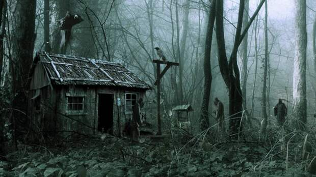 Страшные истории про лес. Медовое - В. Болдырев. Истории на ночь. Мистика. Ужасы про лес