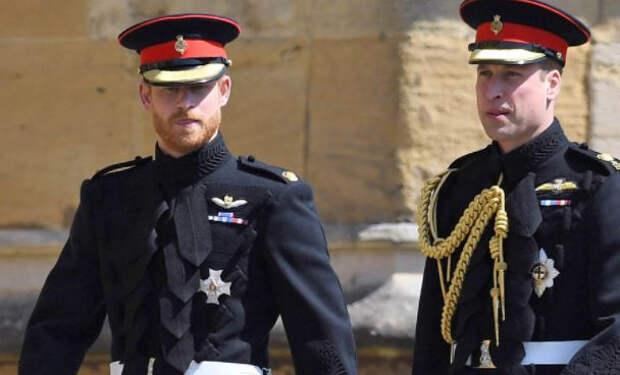 Принцы Уильям и Гарри отказались выступать вместе на открытии памятника принцессе Диане