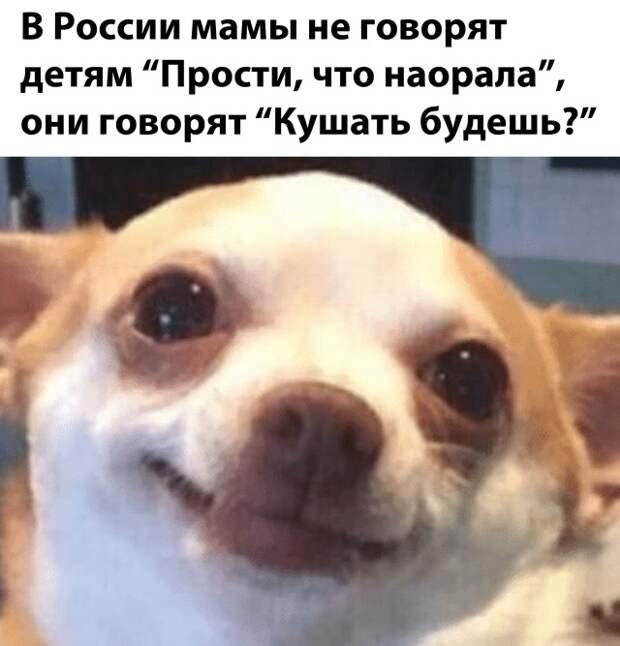 Юмор про детей в России