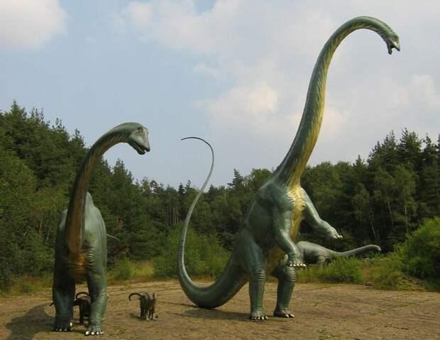 10 вымерших животных с удивительными особенностями