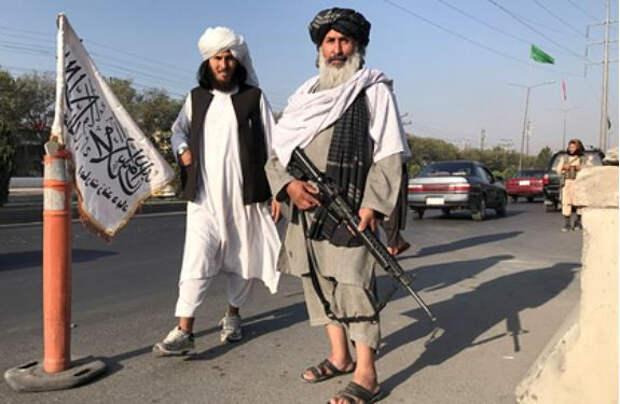 Талибы рассказали о составе нового правительства Афганистана
