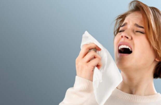 Аллергия или простуда? Как определить?