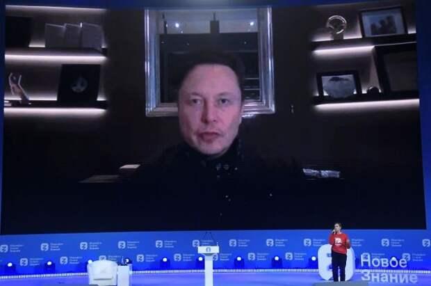 Илон Маск допустил официальное появление Tesla в России