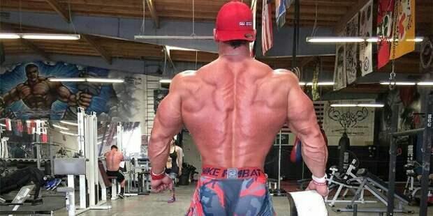 Массивная спина