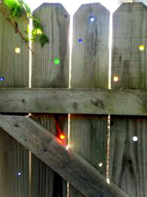 Крошечные отверстия в деревянном заборе.