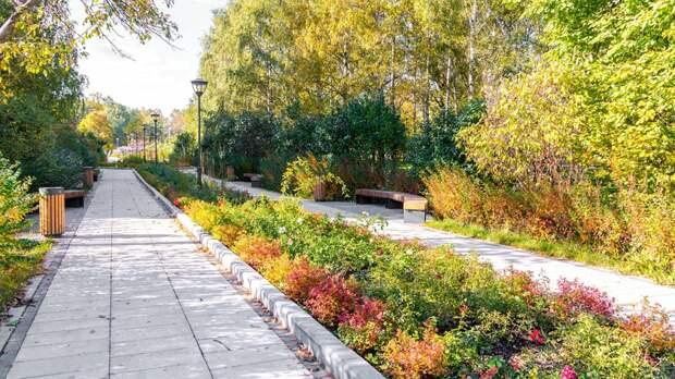 За последние пять лет в СВАО благоустроили более 180 гектаров парка «Яуза»