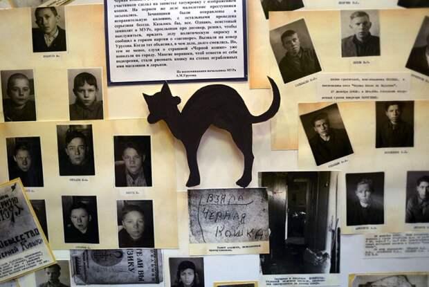 Настоящая история о банде «Чёрная кошка»
