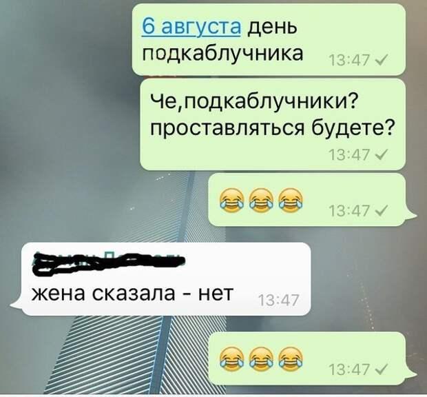 iuIzjyC7330