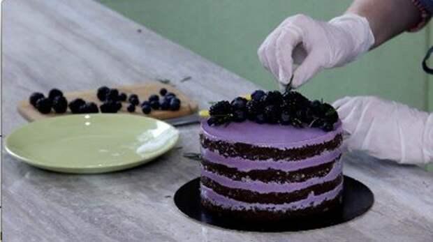 Рецепты: Торт «Черничные ночи». Готовим дома, быстро и вкусно