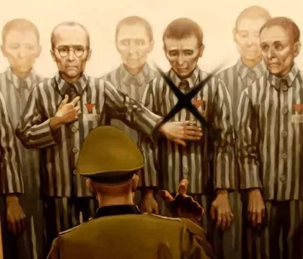 Максимилиан Кольбе война, история, факты