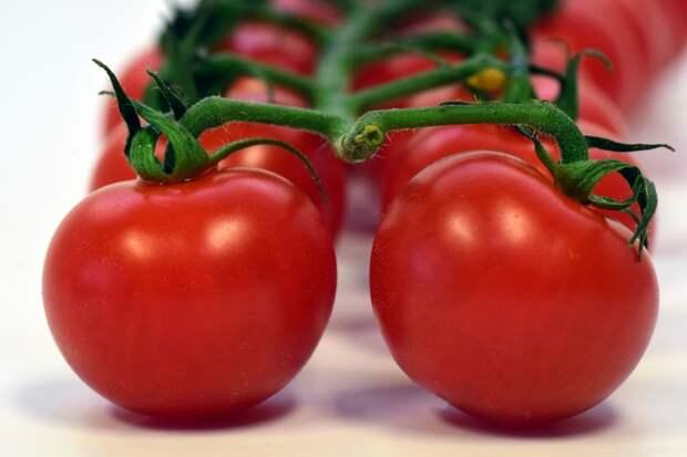Обязательно примените этот секрет, иначе на грядках никогда не будет много помидоров