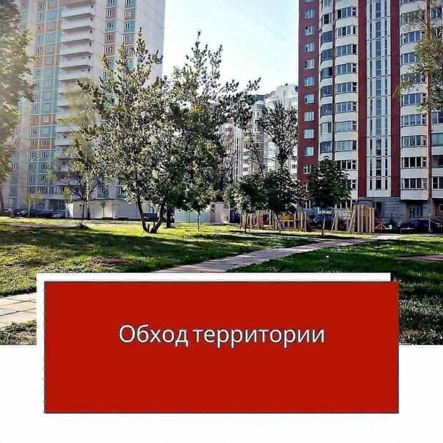 На Сухонской и Молодцова проверят качество содержания дворов