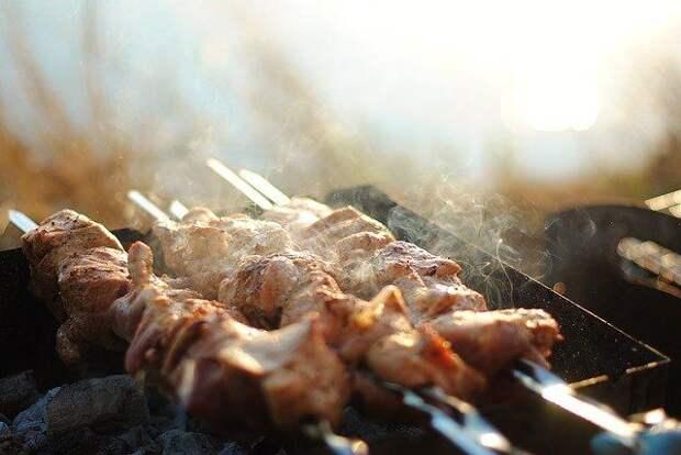 Диетолог назвала лучшие виды мяса для приготовления шашлыка