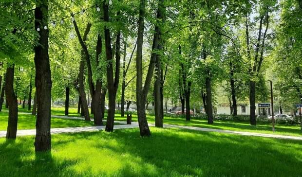 13 млн рублей направят наозеленение Нижегородского района