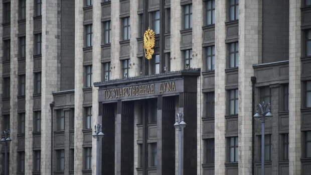 В Думе захотели ужесточить контроль за пневматикой и холодным оружием