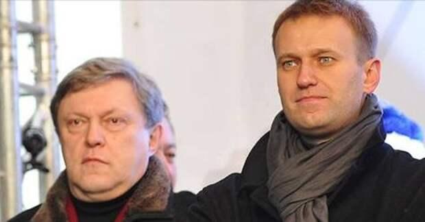 Явлинский потребовал допустить Навального до президентских выборов
