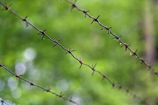 Избившие украинских пограничников на границе с РФ являются сотрудники СБУ