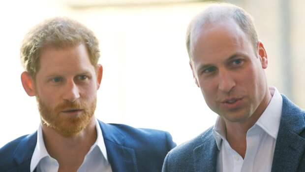 Принцы Уильям и Гарри выступят с отдельными речами на открытии памятника матери