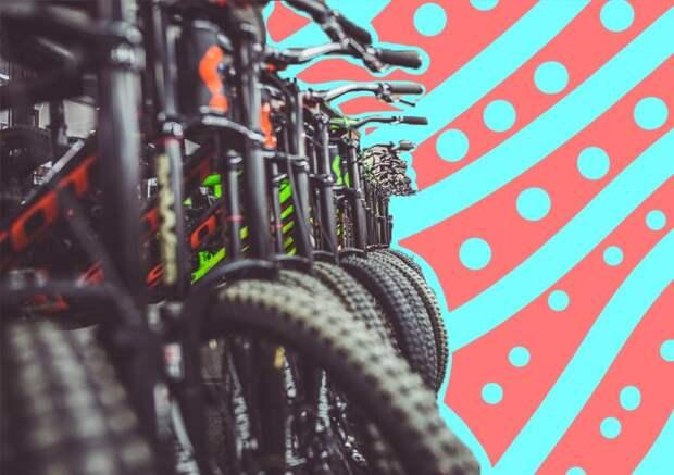 Удачная покупка: как выбрать велосипед поросту