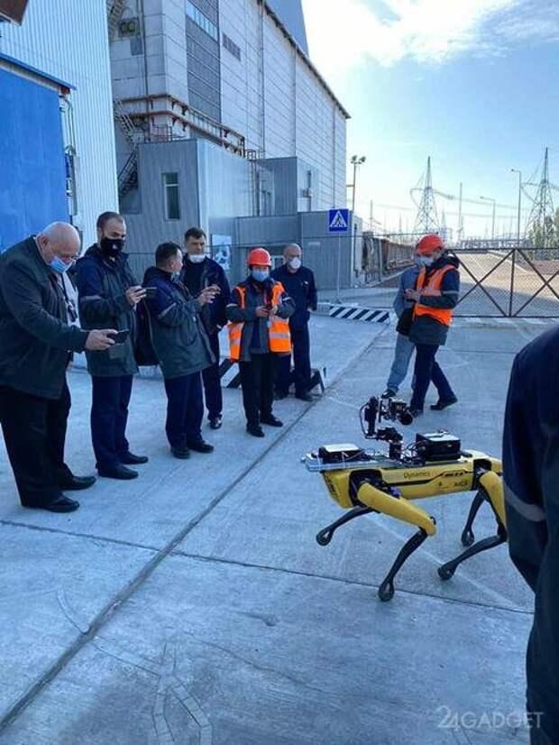 Собакообразный робот Spot Boston Dynamics провел разведку в Чернобыльской зоне (4 фото)