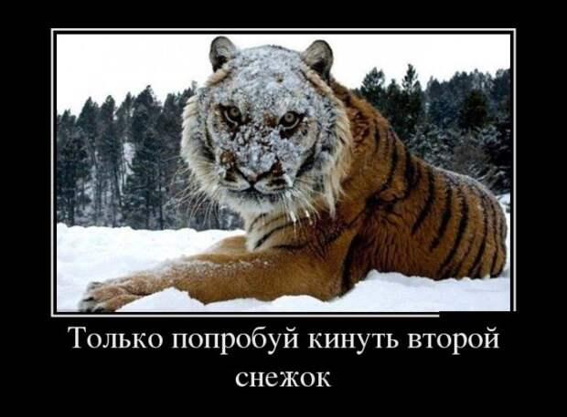 Демотиваторы про Киркорова, доллары и папу...