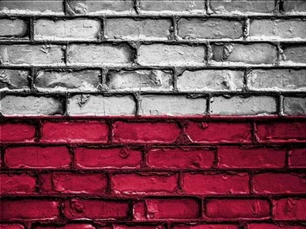 Иностранцы бурно отреагировали на устроенный поляками скандал с флагом РФ