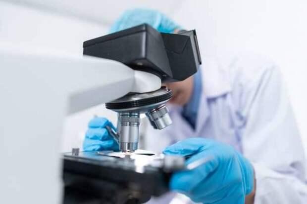 Учёные США открыли новый класс противораковых соединений