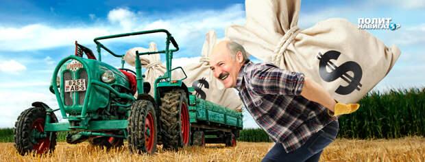 Секторальные санкции, которые ЕС утвердил 24 июня, ударили по наиболее экспортно ориентированным отраслям белорусской...
