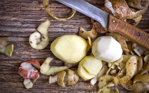 Как использовать удобрение из картофельных очистков на огороде - Огород, сад, балкон