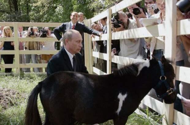 Путин и Вадик