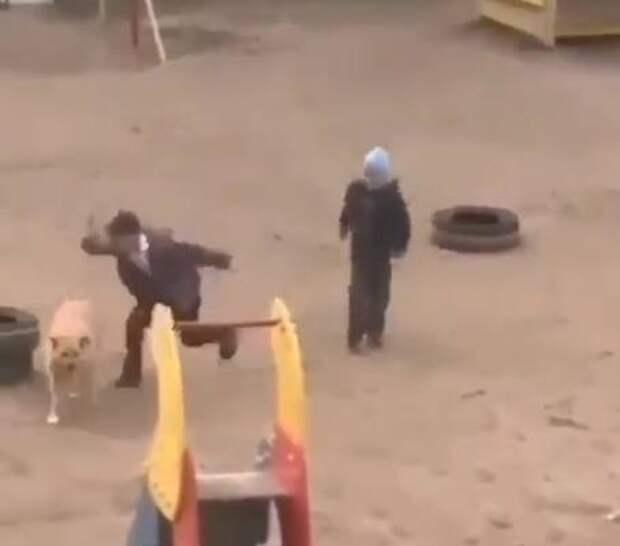 Саратовцев возмутило видео нападения детей на бездомную собаку