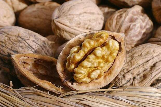 Грецкий орех — вовсе не орех