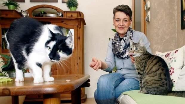 Жизнь в Германии: получательница Hartz-IV отказывается от всего необходимого ради любимых питомцев