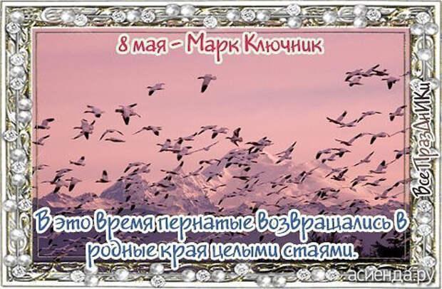 Народный календарь. Дневник погоды 8 мая 2021 года