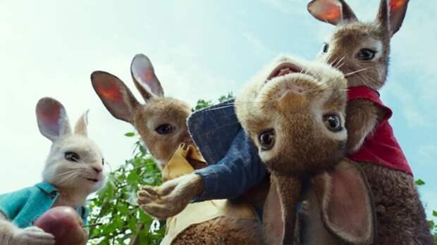 Кто разбавил «Кролика Питера»: в кино случился самый слабый уикенд года
