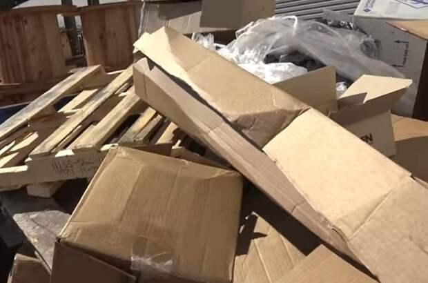 Из контейнера раздавался писк, и волонтерам предстояло попотеть прежде, чем спасти маленьких чернышей