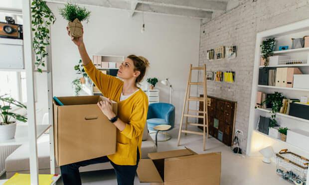 15 вещей, которые привлекут удачу в дом