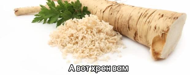 «Хрен вам, а не земля» – в Раде по-русски обратились к МВФ и Соросу