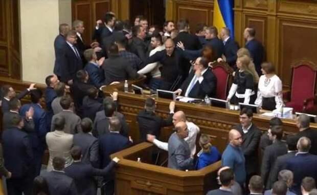 Депутат Зеленского призвал расстрелять другую партию и устроил драку   Русская весна