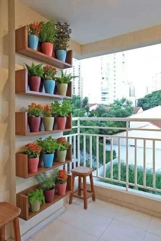 20 популярных идей украшения дома с вертикальным зеленым садом