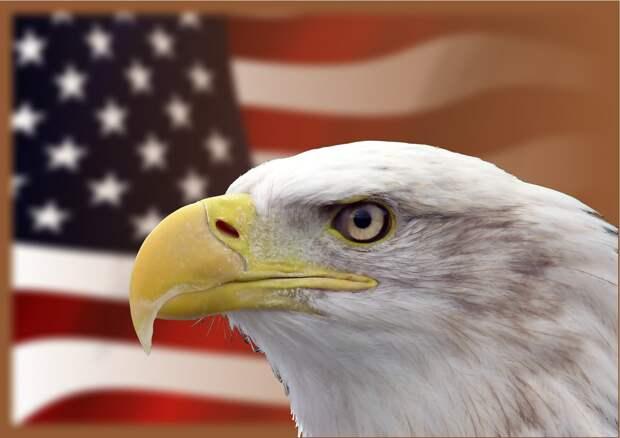 Посольство США в России прекратит выдавать визы для недипломатических поездок