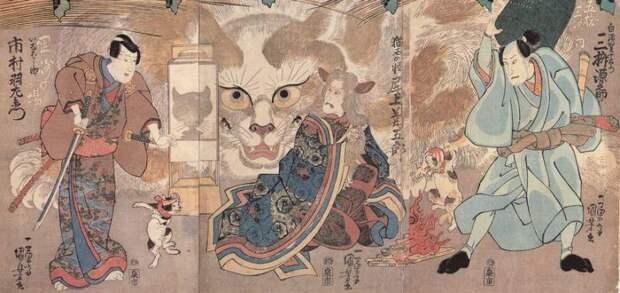 Что может дать людям познание… кошек?