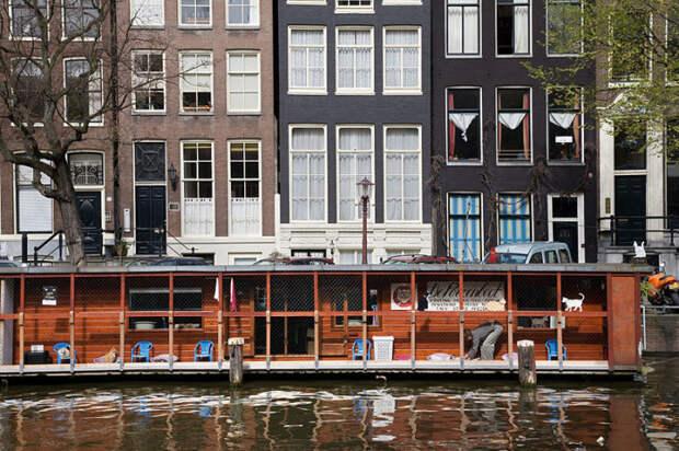 Вид De Poezenboot в канале Амстердам. | Фото: commons.wikimedia.org.